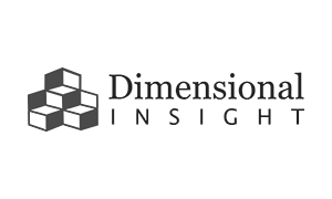 Dimensional Insights